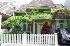 villa-rumah-daun