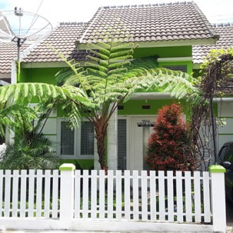 Villa Rumah Daun (Depan Jatim Park 2 / Museum Satwa) ***